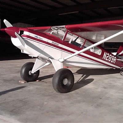 Bearhawk Patrol plane